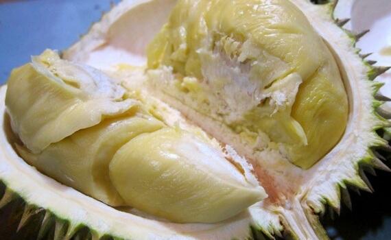 buah durian medan