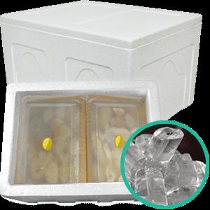 durian packing styrofoam